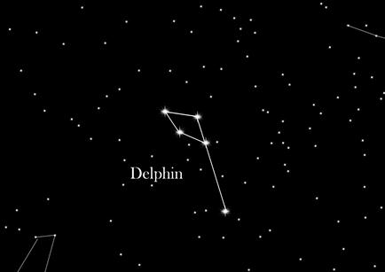 Sternbild Delphin